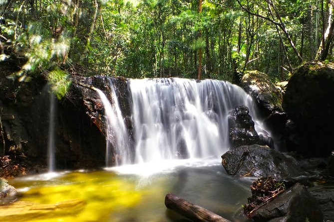 Discover Phu Quoc National Park and Cua Can River full day
