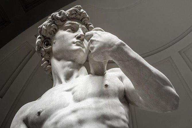 Tour della Galleria dell'Accademia di Firenze, con David di Michelangelo incluso