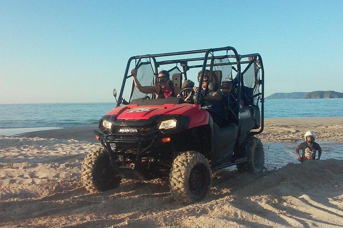 Buggy Tamarindo to Playa Flamingo