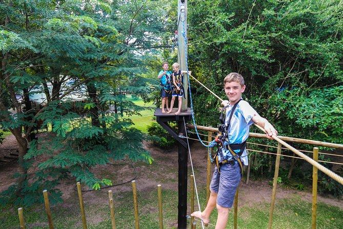 Tree Top Challenge