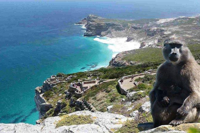 The Cape of Good Hope Ebike experience