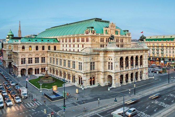 Tour privado: Visita a la ciudad de Viena con el palacio y los jardines de Schonbrunn