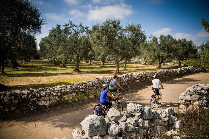 Cycling Across Salento: Capo di Leuca 4-Hour Bike Tour