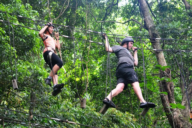 Private Tijuca Forest and Tree Canopy Tour