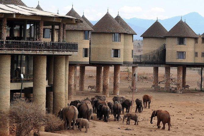 6 Days Amboseli Tsavo West Tsavo East Mombasa luxury lodge safari