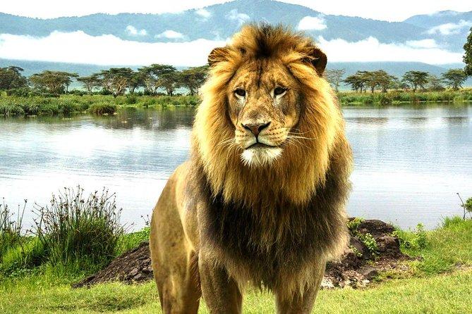 2 Day Lake Nakuru National Park Safari - Daily Departures