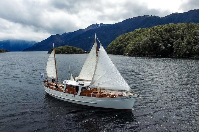 Morning Tea Cruise on Historic Motor Yacht from Te Anau