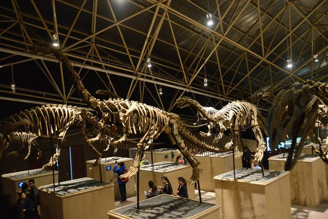 1-Day Dinosaur Tour in Kunming