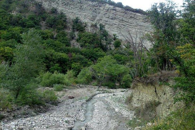 Alti Agach National Park