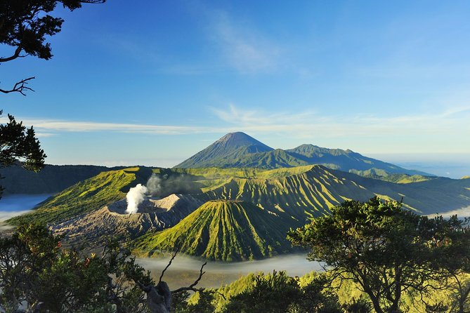 Private Tour: Full Day Explore Mt Bromo Sunrise Midnight Tour from Malang