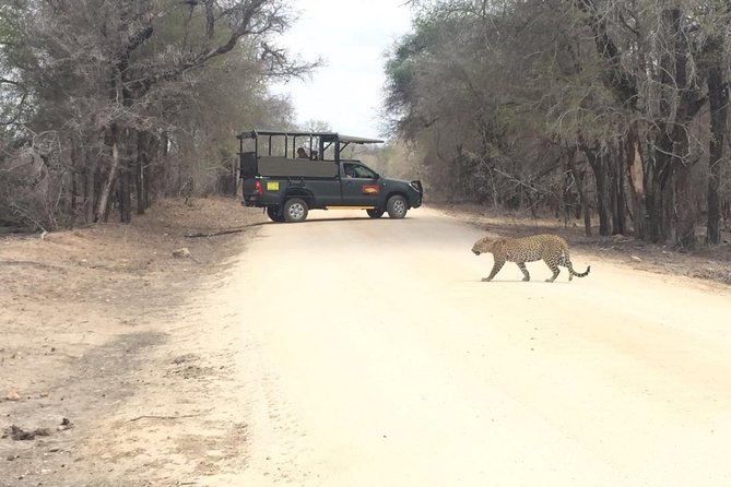 Kruger National Park Private Guided Afternoon Game Drive