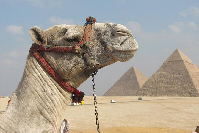 Full-Day Tour to Ancient Egypt