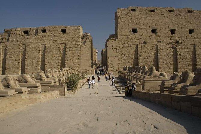 Privat dagstur til Luxor fra Aswan med lunsj