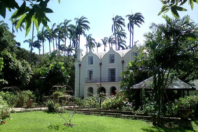 Barbados Harrison's Cave and St Nicolas Abbey Tour