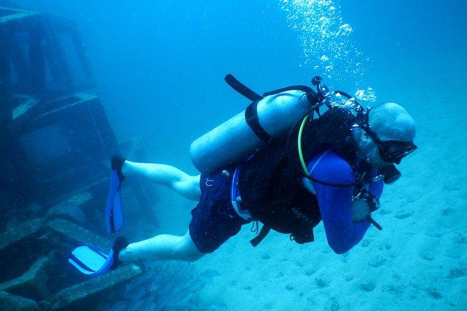 Maak kennis met scubaduiken op Koh Tao of Sail Rock vanuit Koh Samui