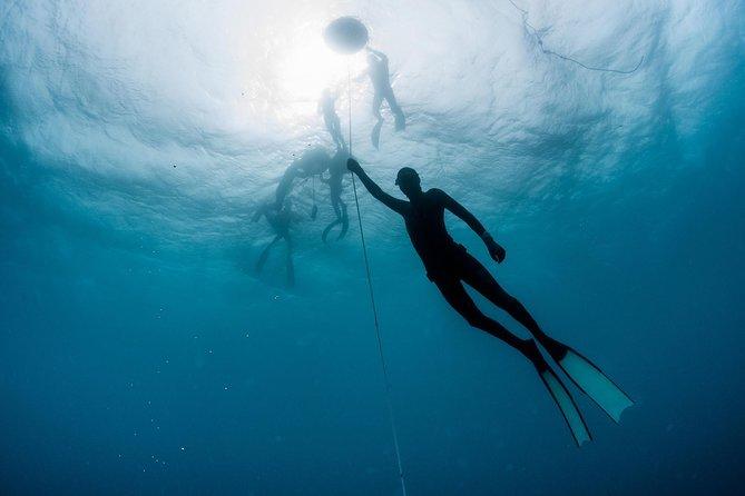 PADI Freediver-beginnerscursus