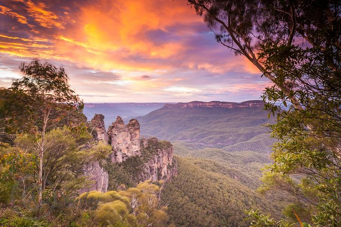Blue Mountains Luxury Private Tour | Fully Inclusive | Scenic World & Much More!