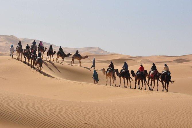 Tour du Sahara à Erg Chebbi