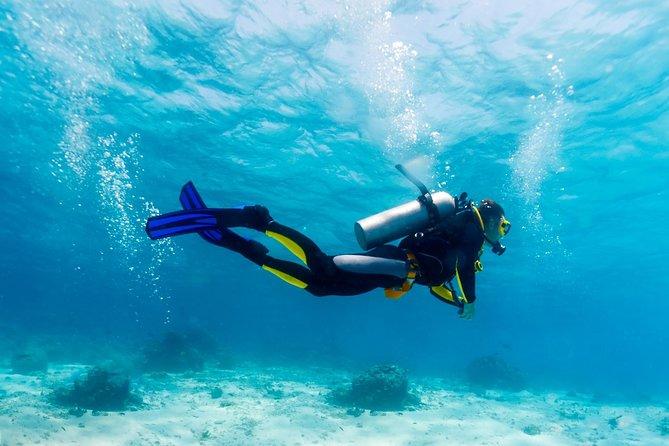 Scuba Referral Dives