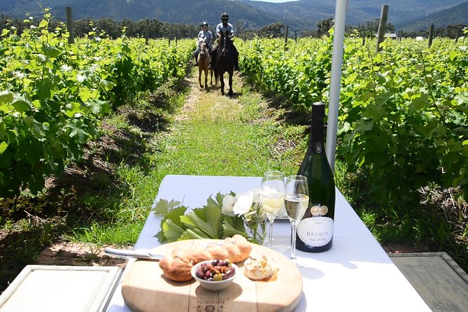 1/2 Day Wine Trail on Horseback