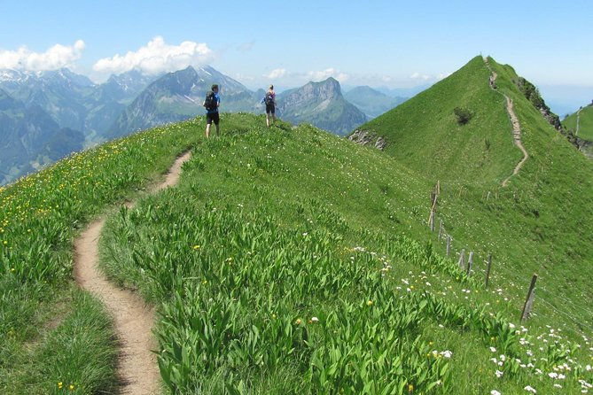 Peak to Peak Private Hike with Transport from Lucerne