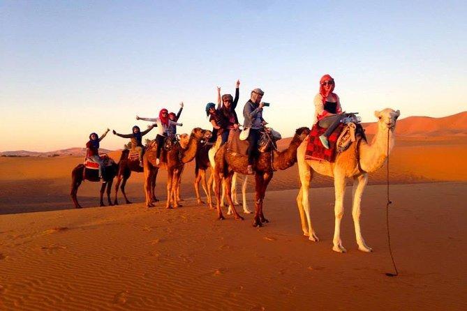 5 Days Camel Trekking Tour From Marrakech