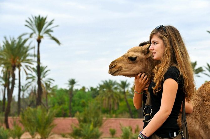 3 Days Desert Tour From Casablanca