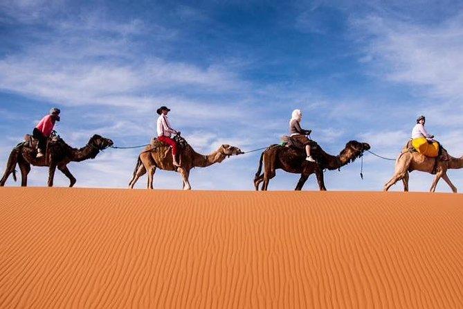 4 dias de viagem compartilhada no deserto de Marrakech a Fez via SAHARA