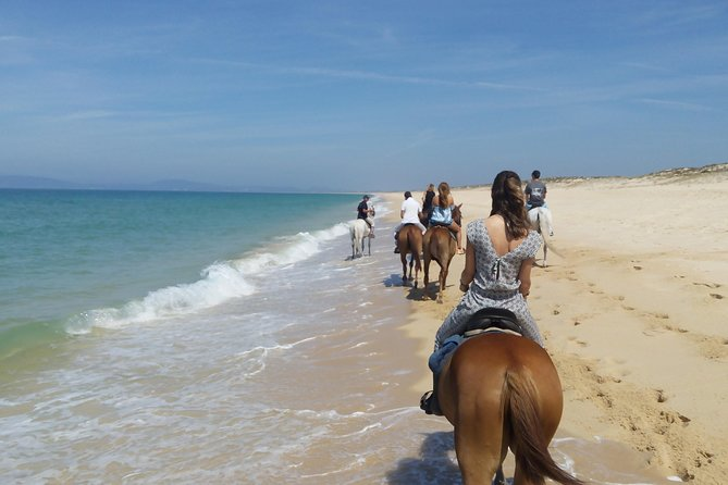 Horse Riding Tour on the Beach photo 1