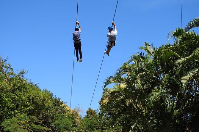 Rain Forest Zip Line Park plus Rain forest Hiking Tour