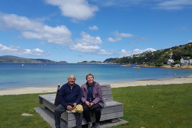 Scenic Shore Excursion of Wellington Highlights Tour