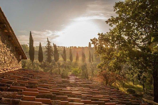 Food Tasting Tour - Gastronomische & wijnervaring in Chianti (Toscane)
