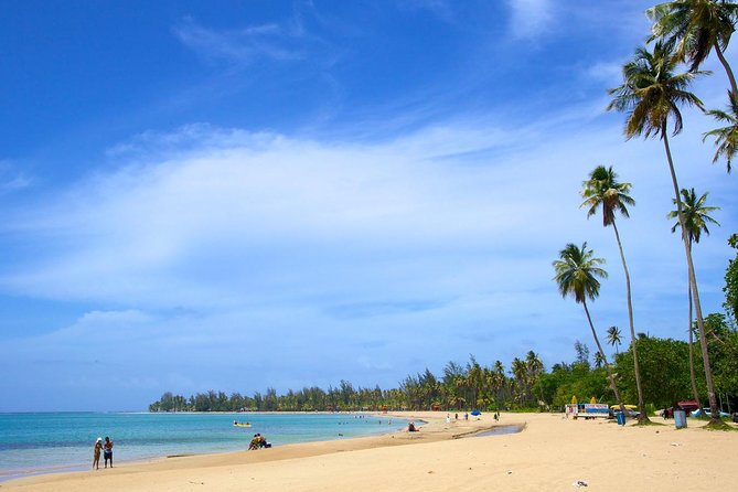 Rainforest & Luquillo Beach Half Day