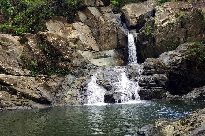 Rainforest Adventure: Private Waterfall, & Beach