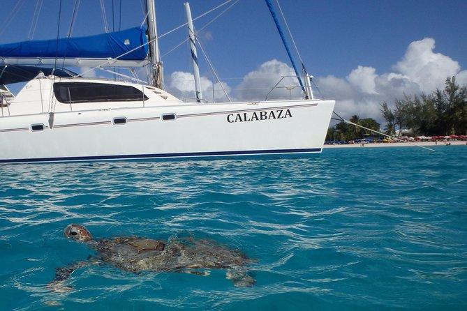 5-timers liten gruppe katamaran Cruise fra Bridgetown med lunsj