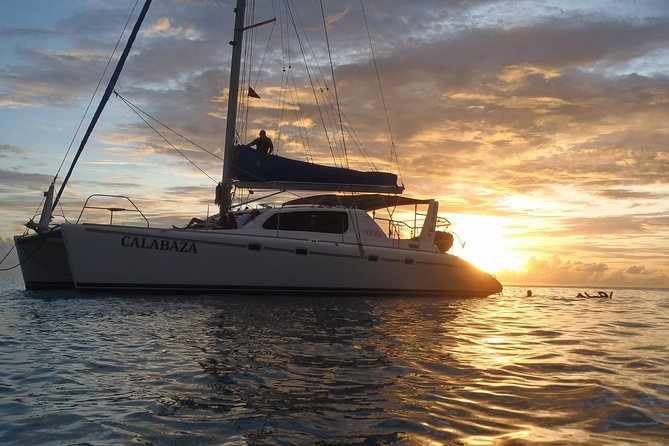 Afternoon Luxury Catamaran Seiling og Charter Cruise fra Bridgetown