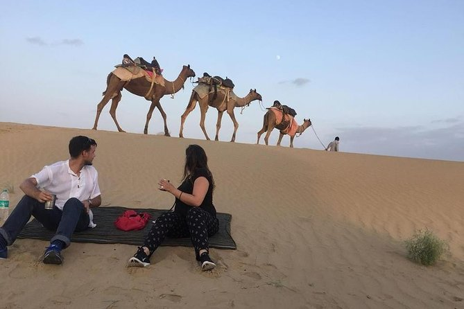 Half Day Camel Safari Sunset with Dinner Tour (Non Touristic)