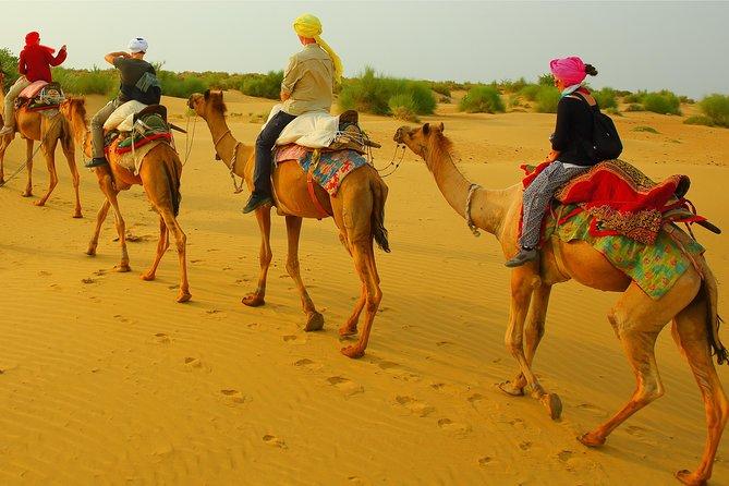 Half Day Overnight Desert Tour (Non Touristic)