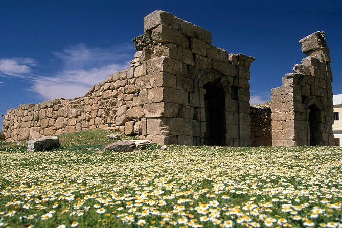 Half Day Tour to Desert Castles from Amman photo 3