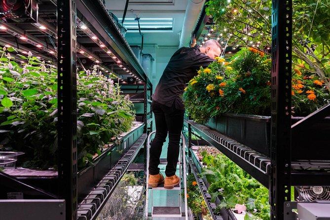 Manhattan Farm.One Indoor Hydroponic Farm Culinary Tour & Tasting with Prosecco