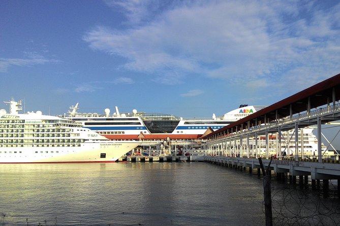 Kuala Lumpur Cruise Excursions from Port Klang Cruise Terminal to KL Tour