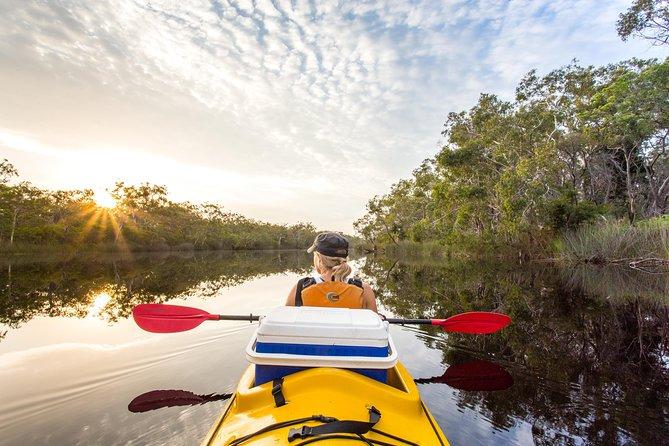 Self-Guided Noosa Everglades Kayak Tour