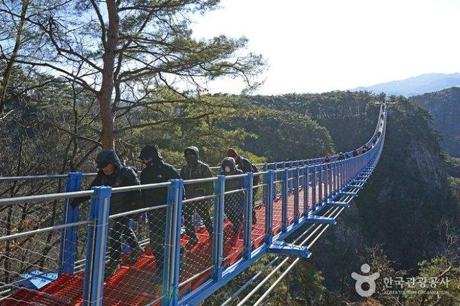 Wonju Suspension Bridge One Day Tour