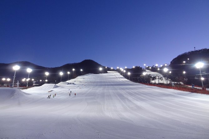 Divertimento in Everland e sci notturno al Jisan Forest Ski Resort Day Tour