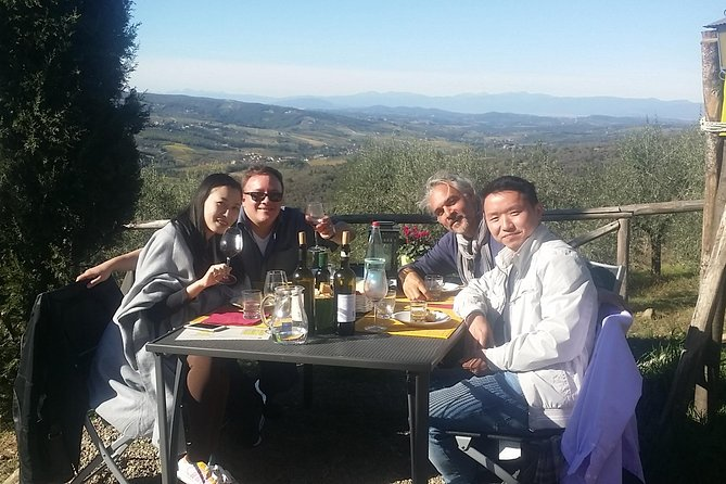 Discover Organic and Biodynamic Chianti Small Wineries