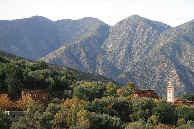 Hoog Atlasgebergte en Desert Day Tour vanuit Marrakech