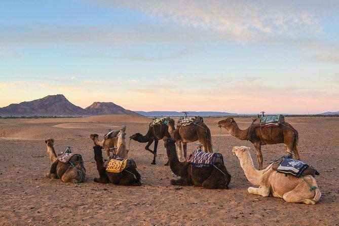 02 Days Marrakech - Ouarzazate - Zagora