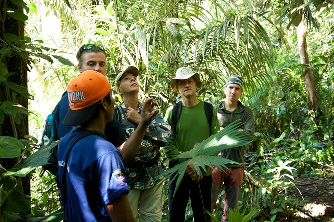 8-Day Private Round trip Andes and Amazon Rainforest