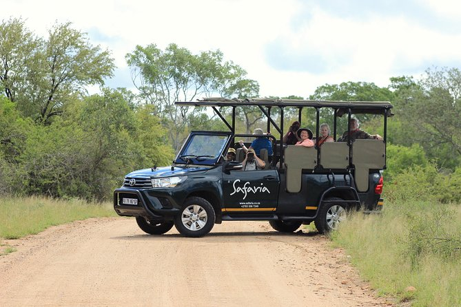 Kruger National Park Private Full-Day Safari - Private Safari Vehicle & Guide