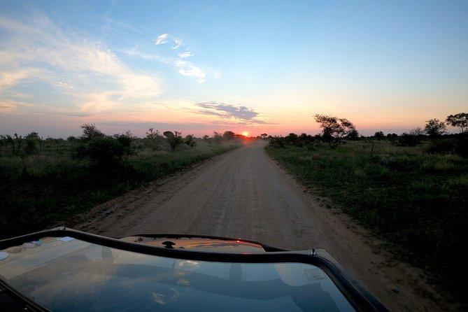 Luxury Open Safaria Vehicle